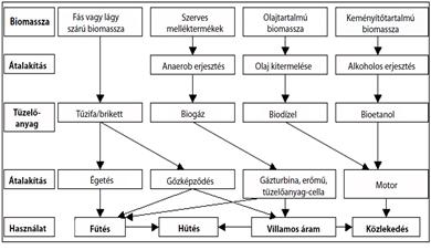 A bioüzemanyagok fajtái